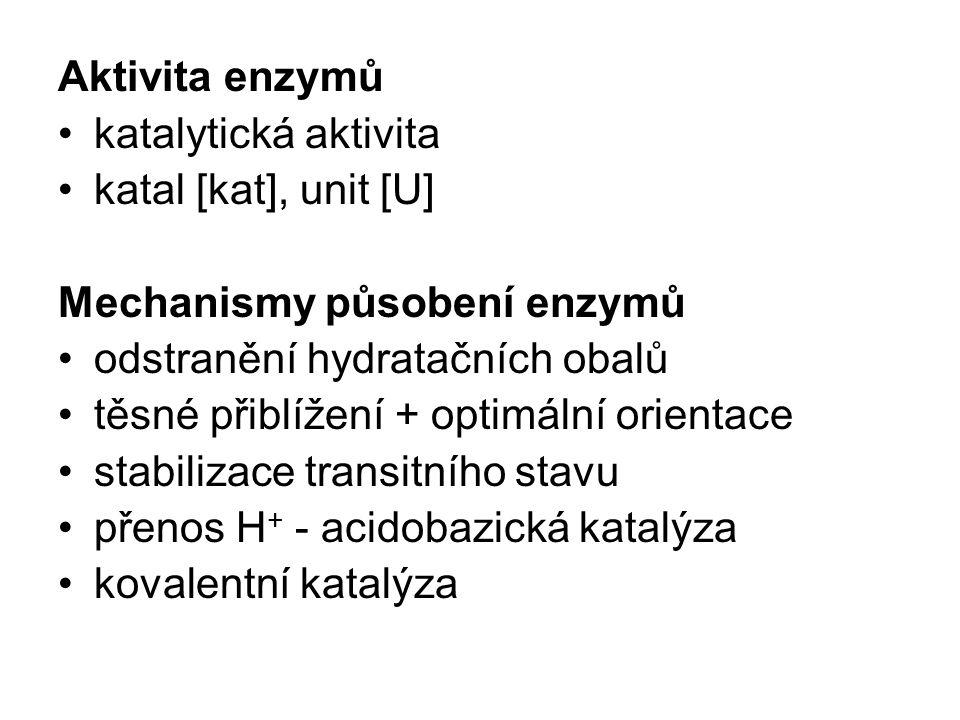 Aktivita enzymů katalytická aktivita. katal [kat], unit [U] Mechanismy působení enzymů. odstranění hydratačních obalů.